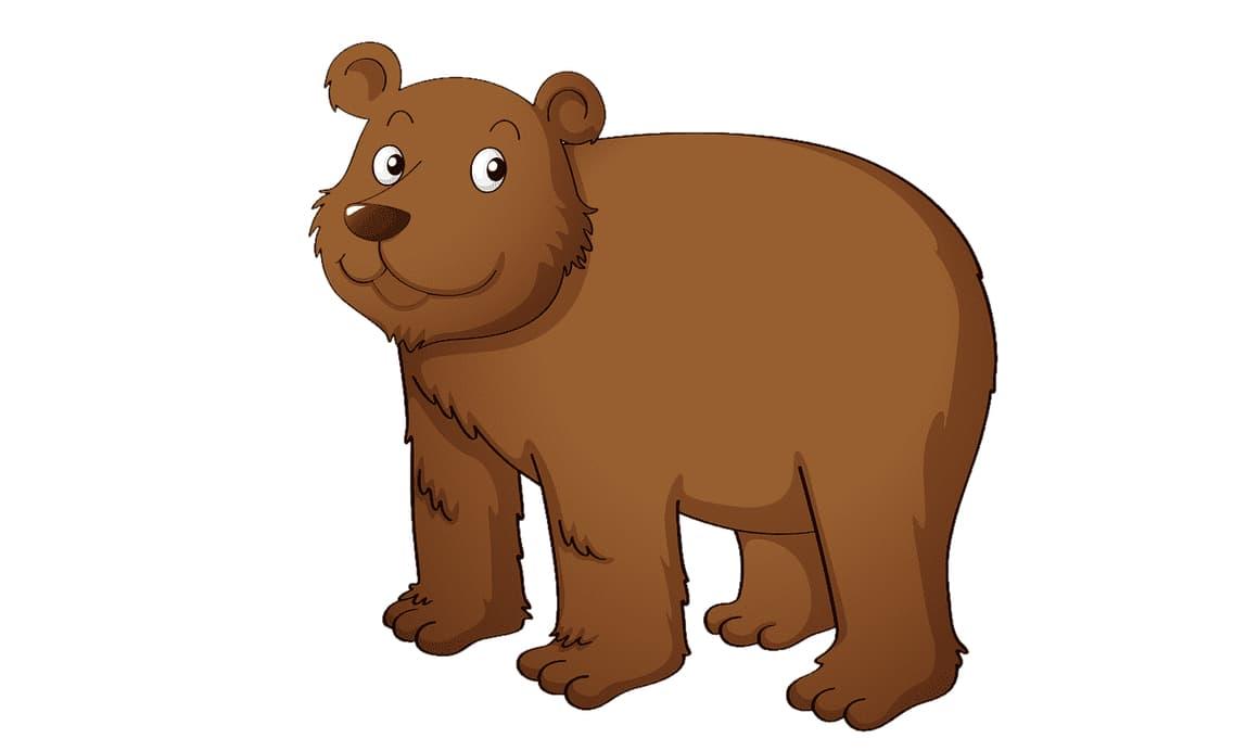 Как нарисовать медведя своими руками: инструкция для новичков
