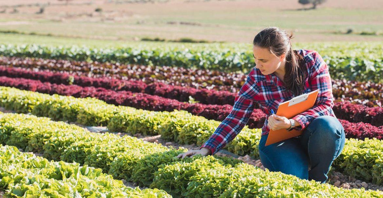 Здоровое сельское хозяйство для здоровых людей